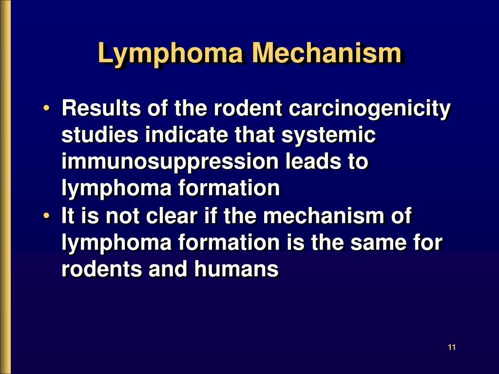 Lymphoma Mechanism