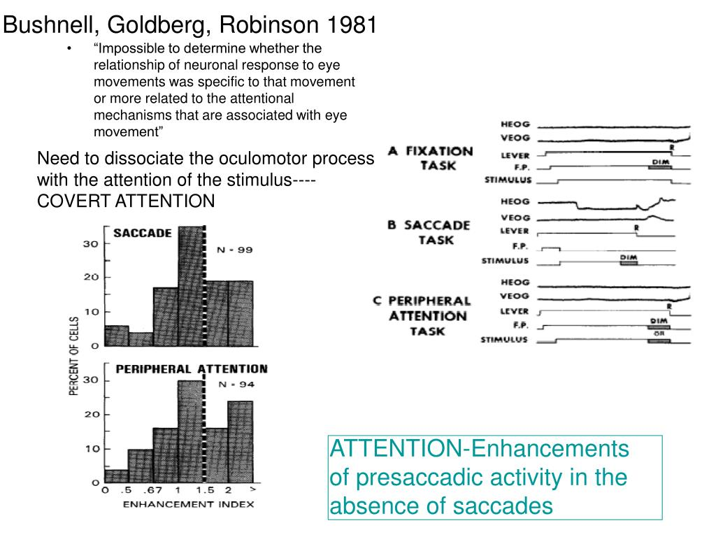 ATTENTION-Enhancements of presaccadic activity in the absence of saccades