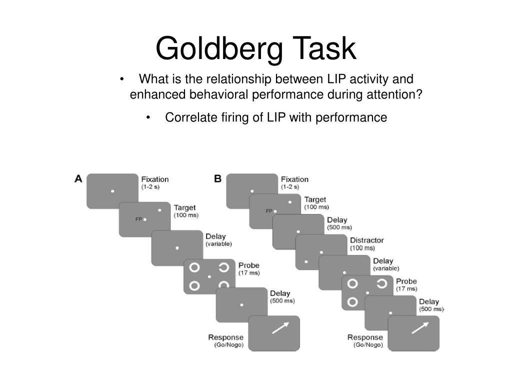 Goldberg Task