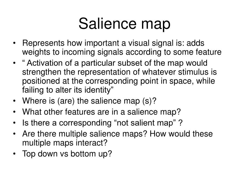 Salience map