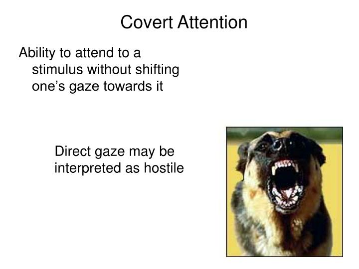 Covert Attention