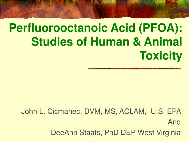 Perfluorooctanoic acid pfoa studies of human animal toxicity