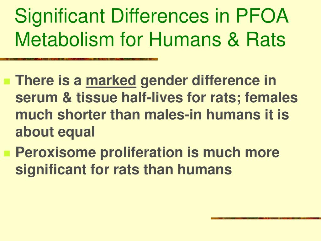 Significant Differences in PFOA Metabolism for Humans & Rats