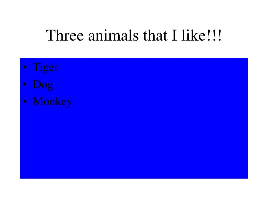 Three animals that I like!!!