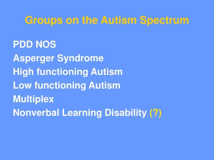 Groups on the Autism Spectrum