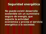 seguridad energ tica17