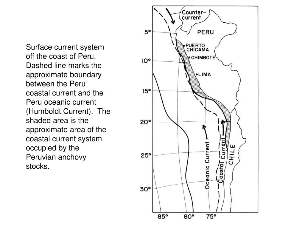 Surface current system off the coast of Peru.  Dashed line marks the approximate boundary between the Peru coastal current and the Peru oceanic current (Humboldt Current).  The shaded area is the approximate area of the coastal current system occupied by the Peruvian anchovy stocks.