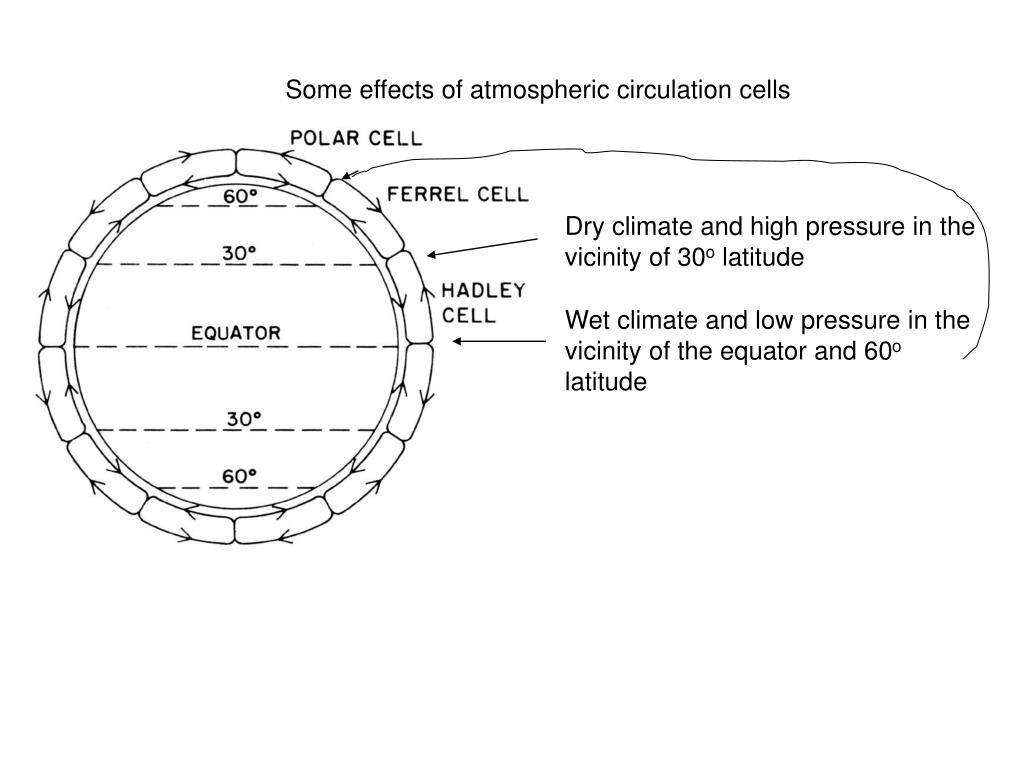 Some effects of atmospheric circulation cells