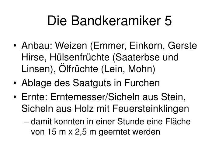 Die Bandkeramiker 5