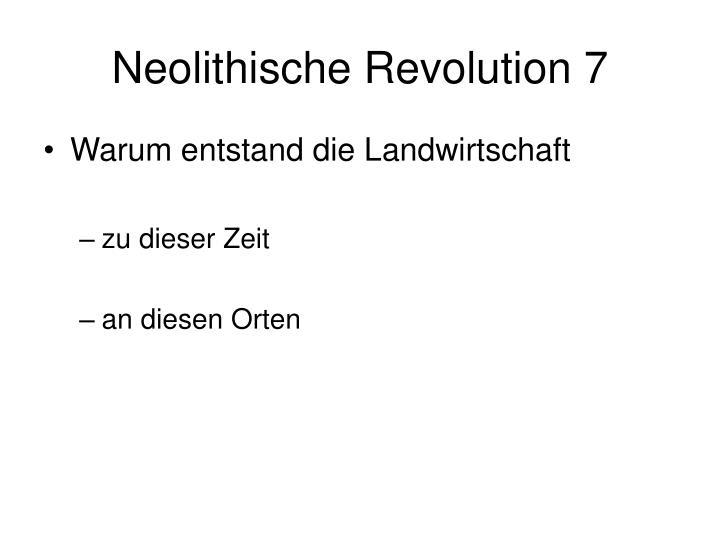 Neolithische Revolution 7