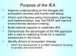purpose of the iea