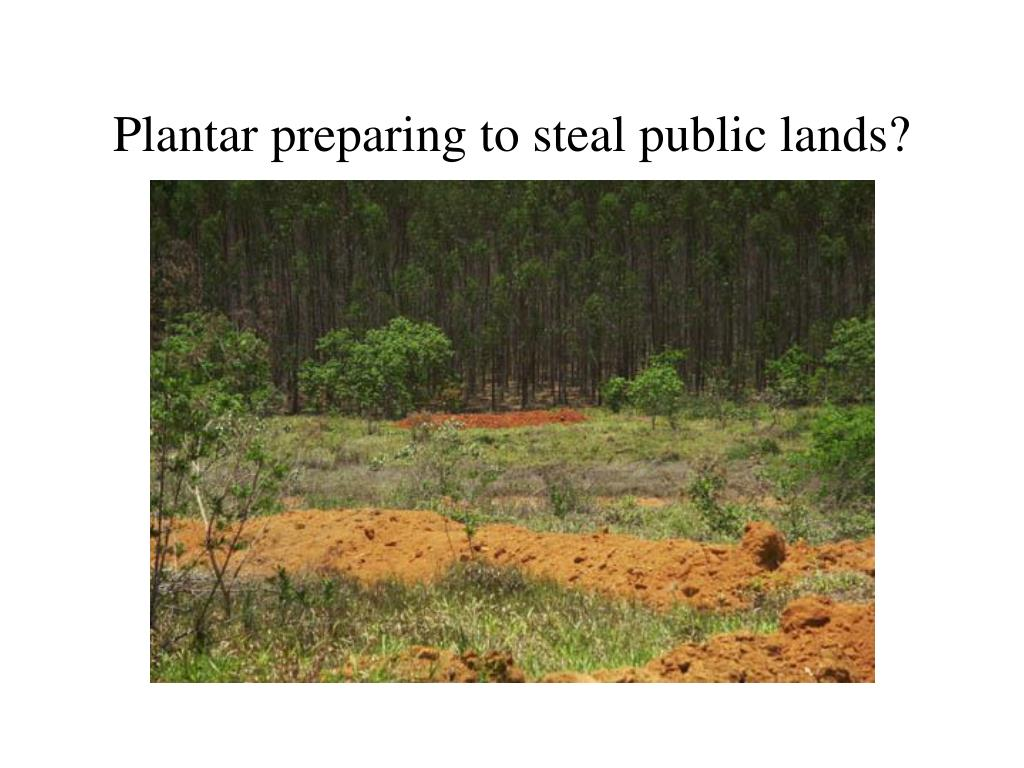 Plantar preparing to steal public lands?