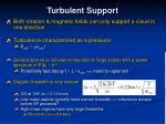 turbulent support