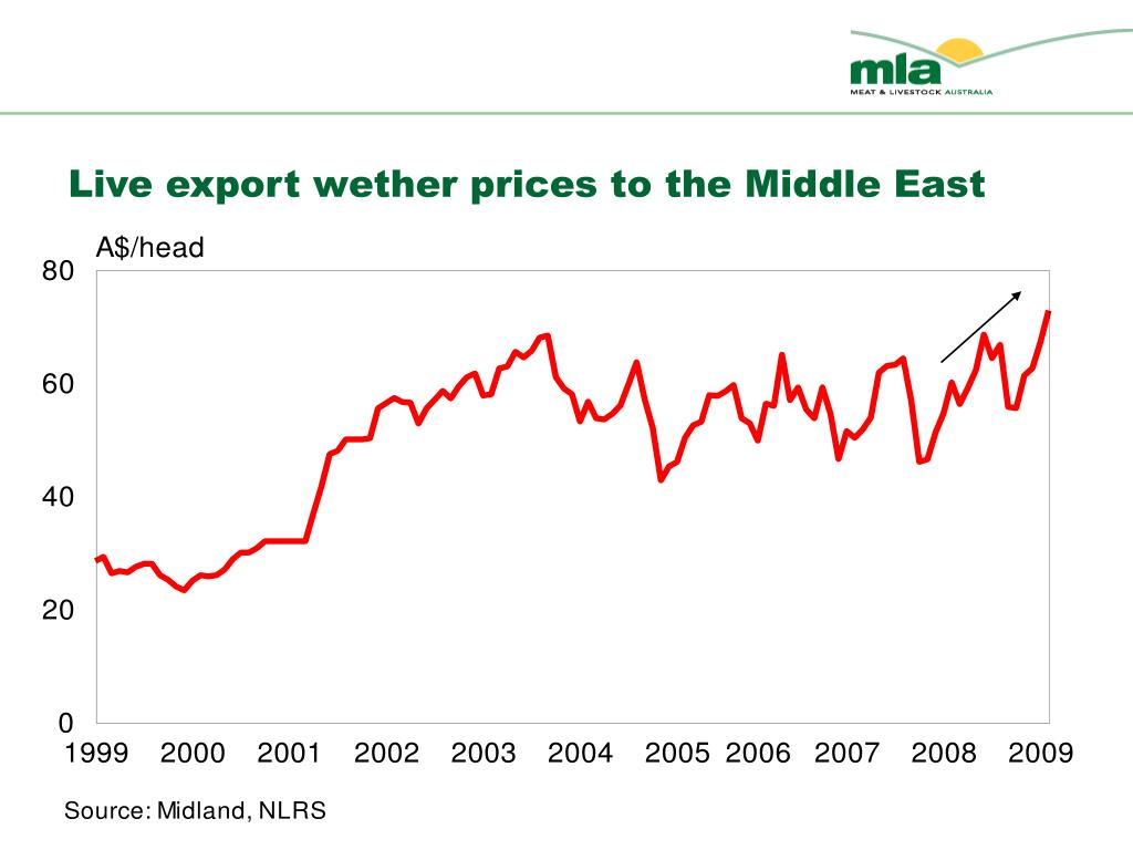 Live export wether prices to the Middle East