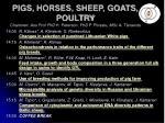 pigs horses sheep goats poultry chairmen ass prof phd h peterson phd p piirsalu msc a t navots