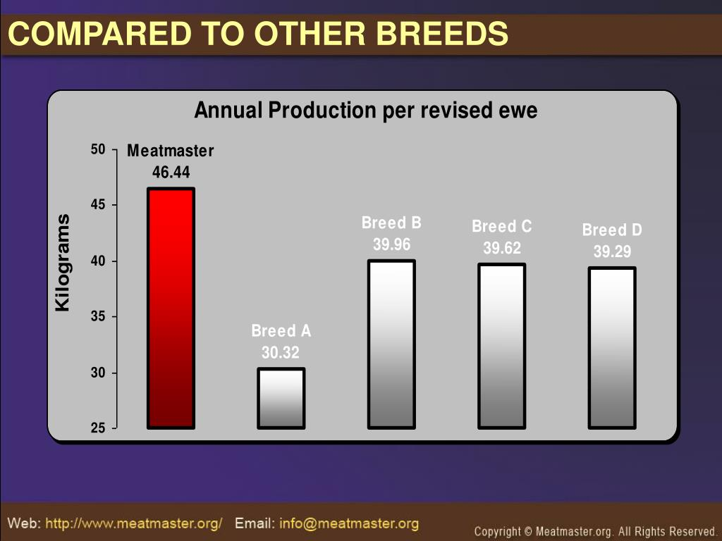 COMPARED TO OTHER BREEDS