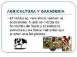 agricultura y ganaderia