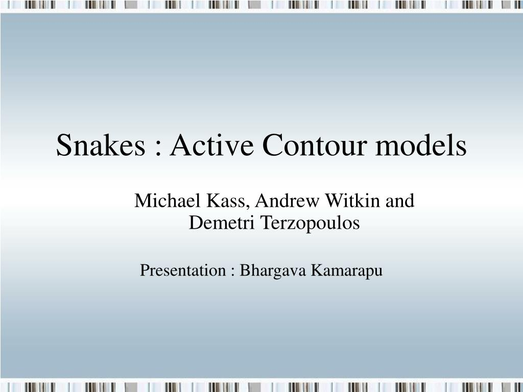 snakes active contour models l.