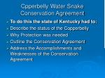 cpperbelly water snake conservation agreement16