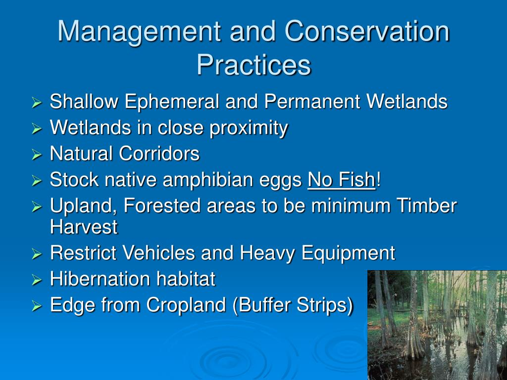 Management and Conservation Practices