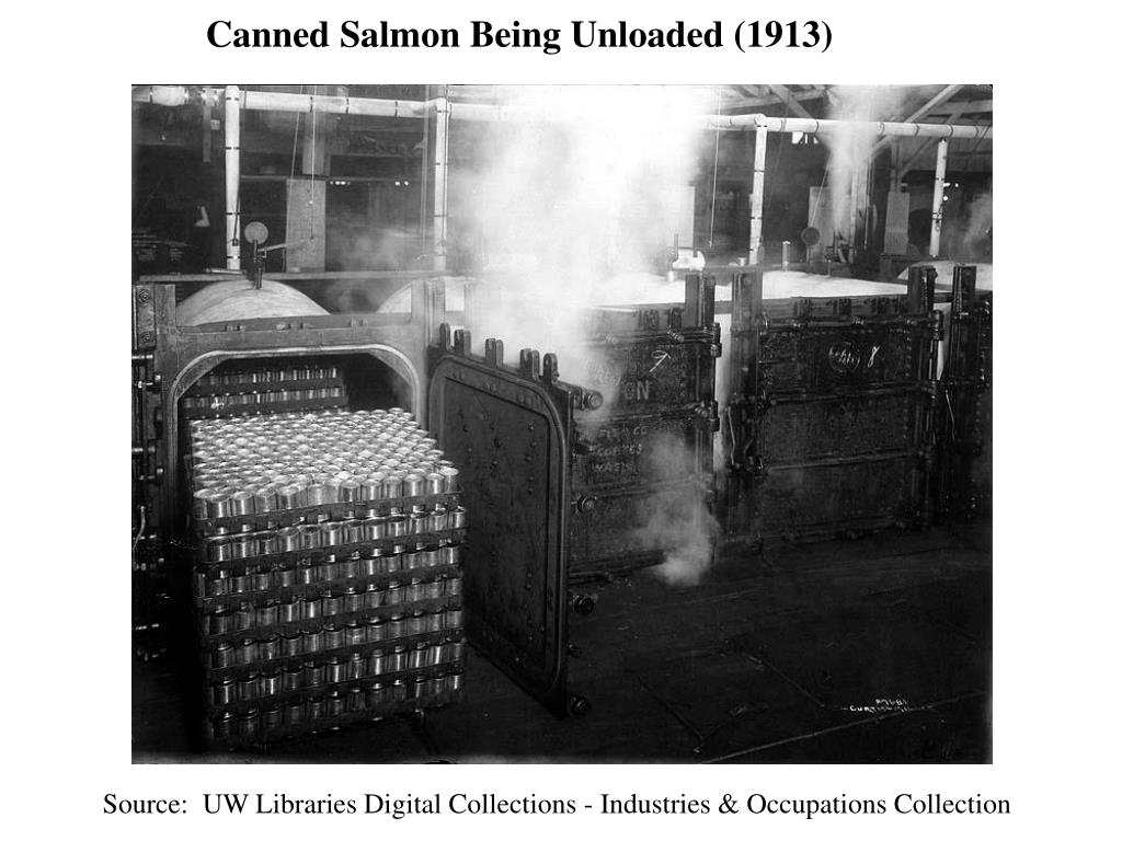 Canned Salmon Being Unloaded (1913)