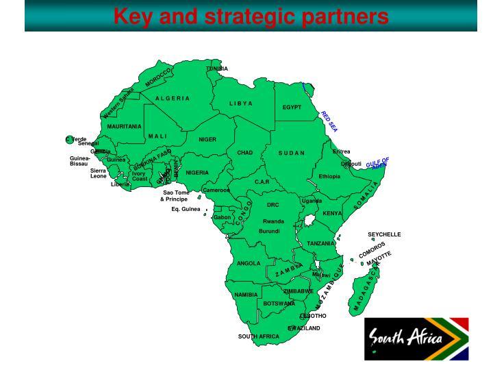 Key and strategic partners