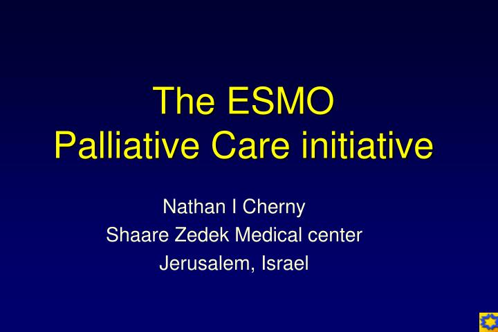 The esmo palliative care initiative