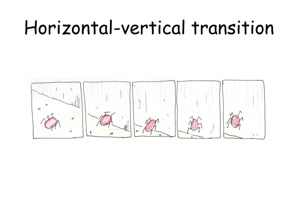 Horizontal-vertical transition