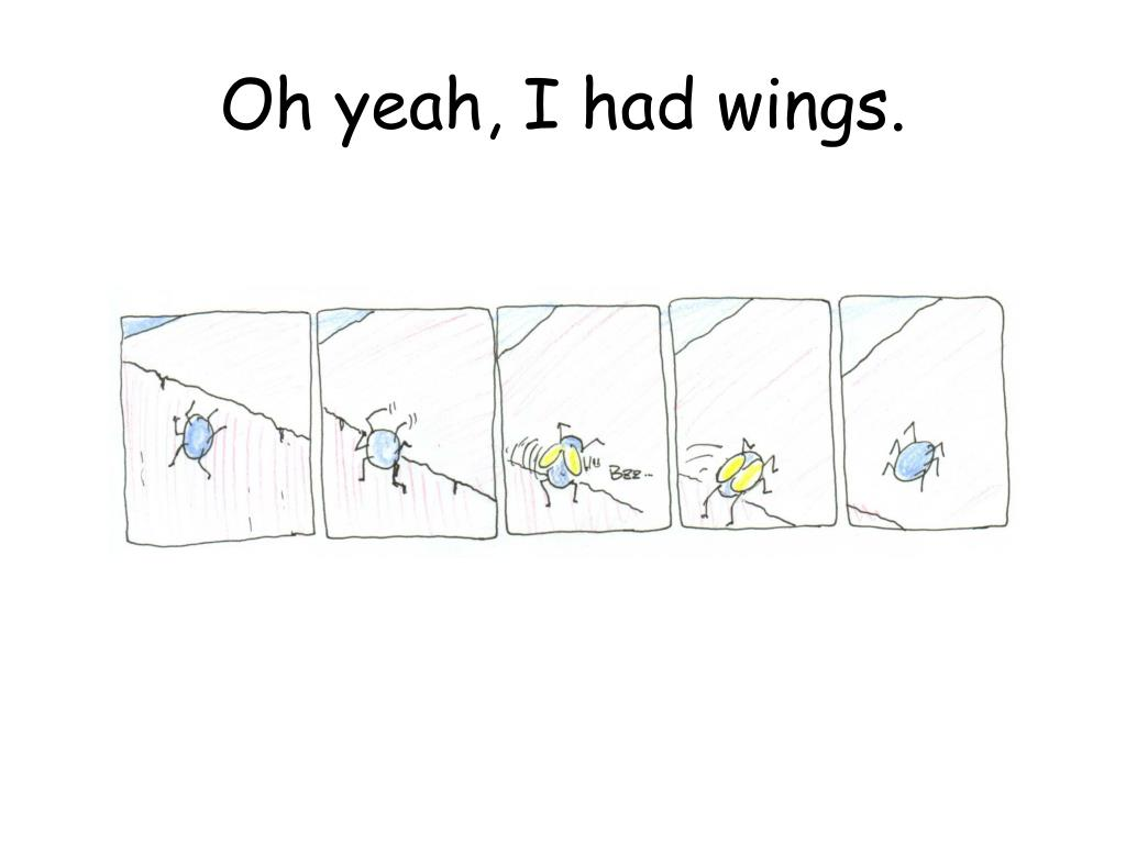 Oh yeah, I had wings.