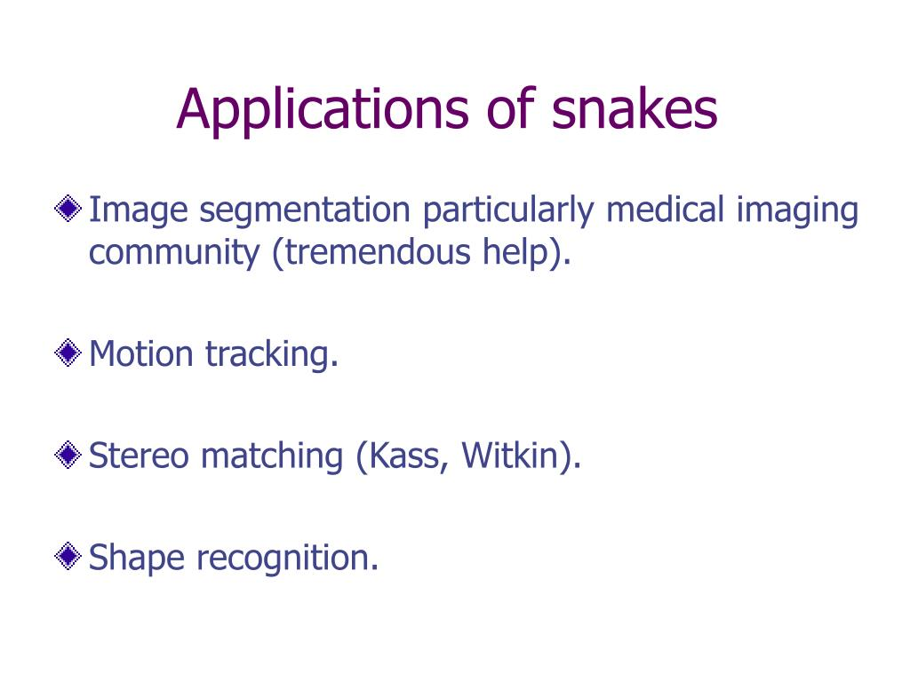 Applications of snakes
