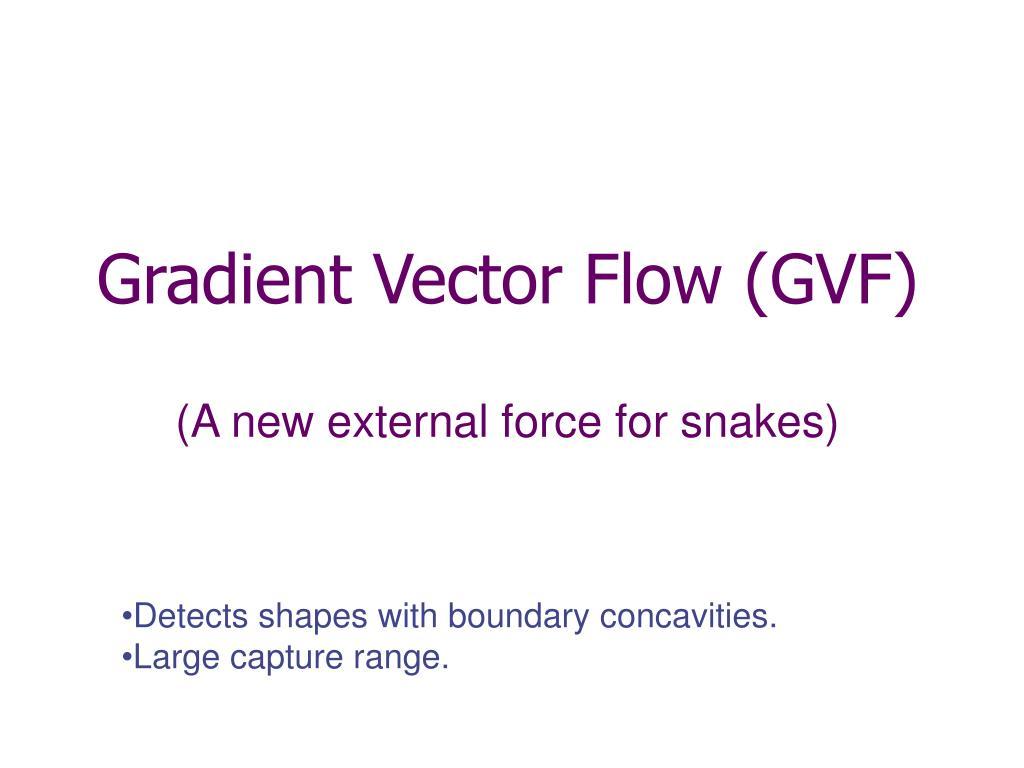 Gradient Vector Flow (GVF)