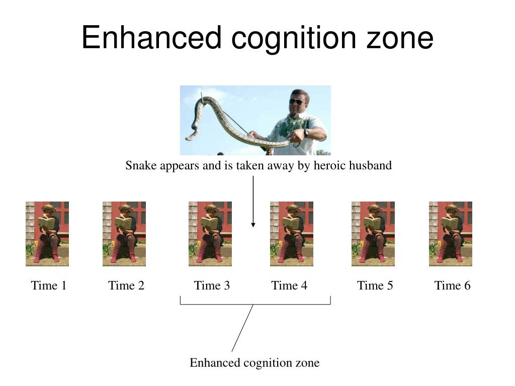 Enhanced cognition zone