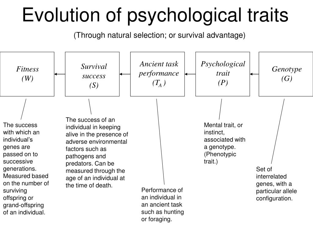Evolution of psychological traits