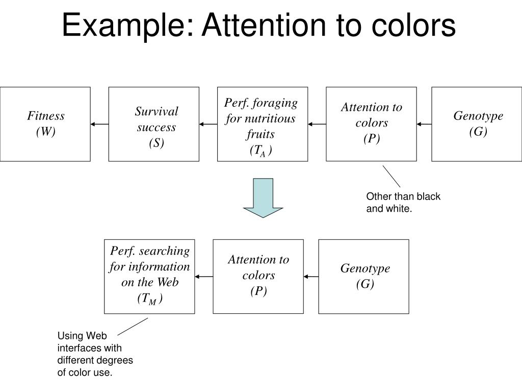 Example: Attention to colors
