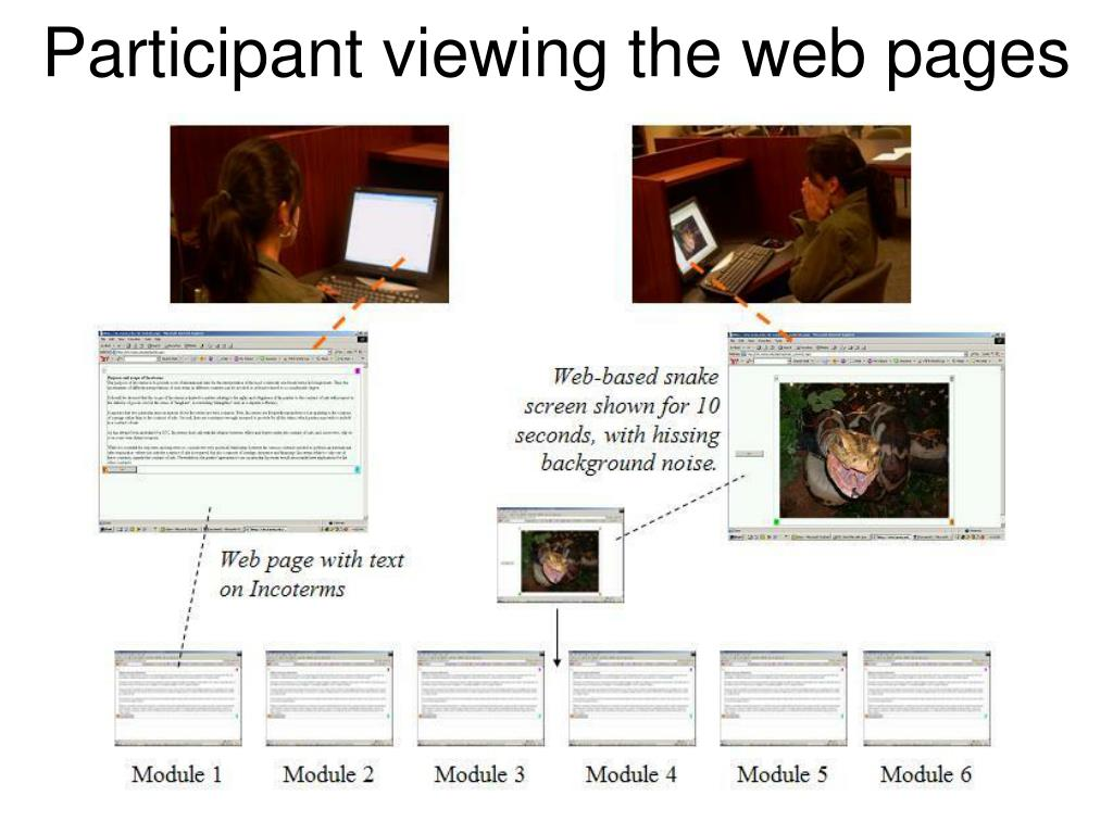 Participant viewing the web pages
