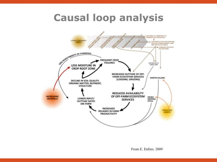 Causal loop analysis
