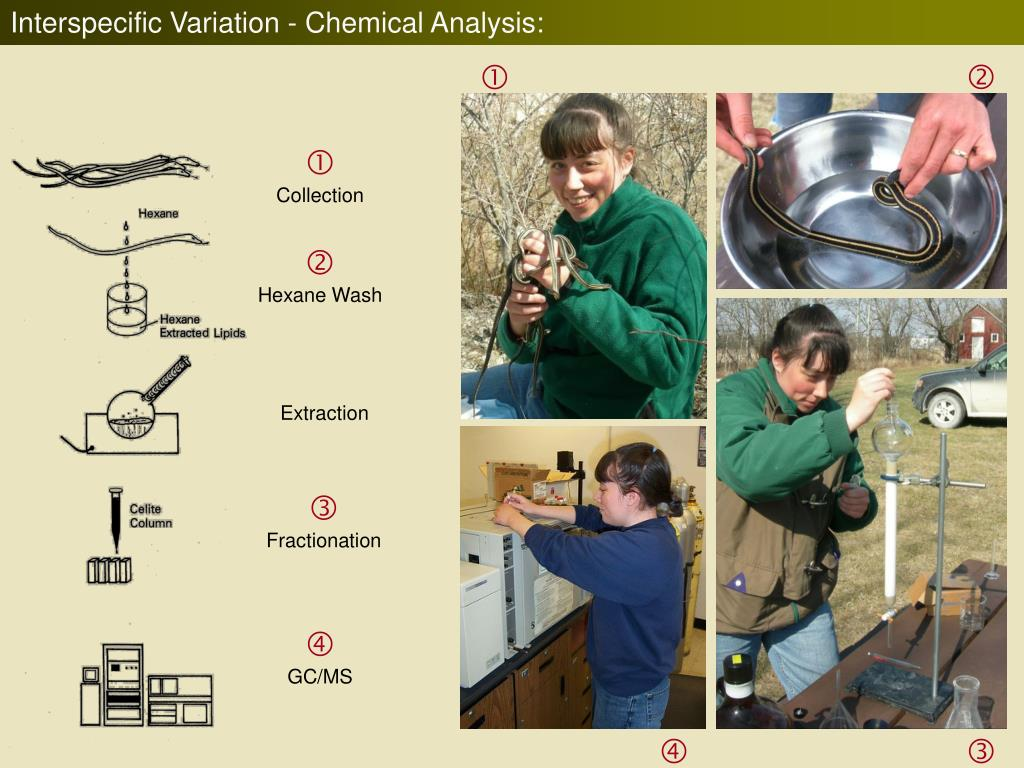 Interspecific Variation - Chemical Analysis: