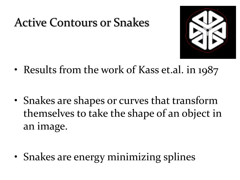 Active Contours or Snakes