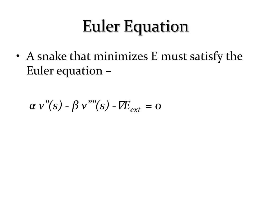 Euler Equation