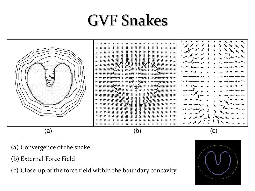 GVF Snakes