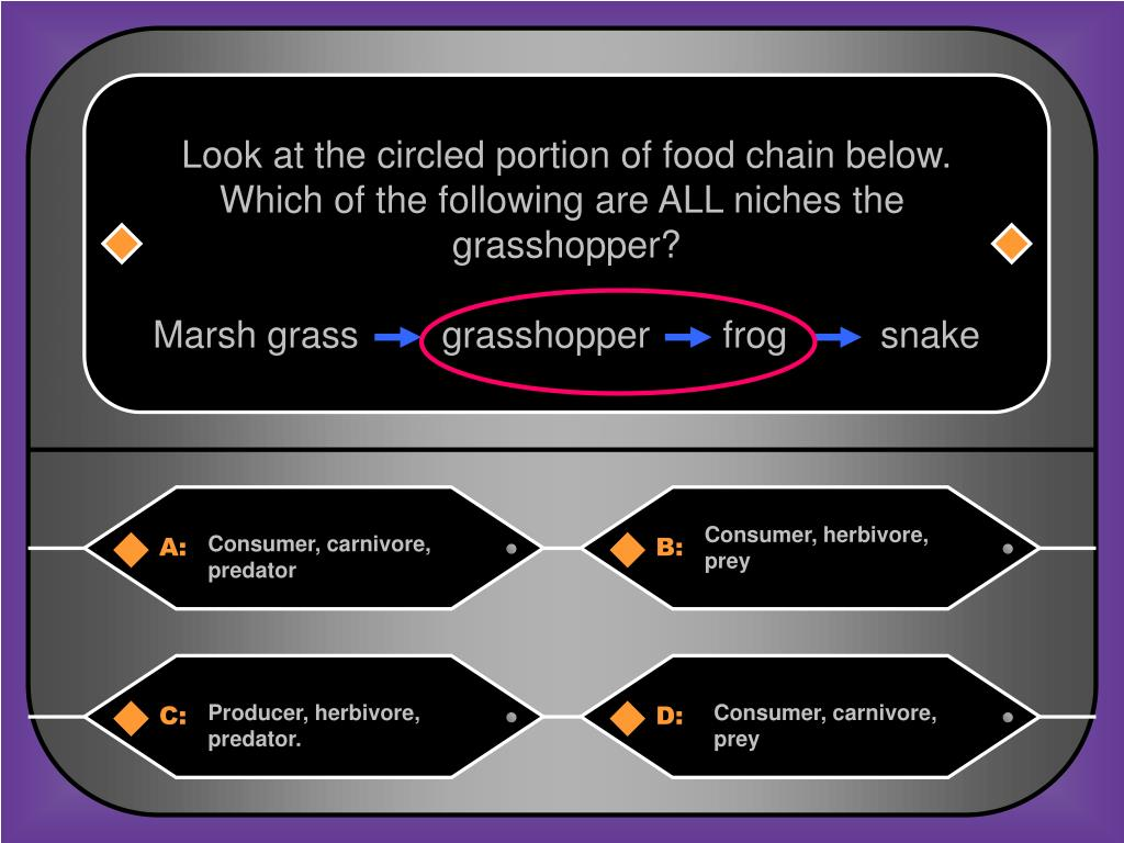 Look at the circled portion of food chain below.