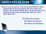 about flv player