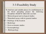 3 3 feasibility study