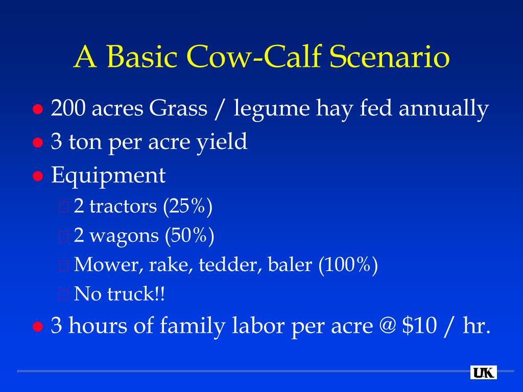 A Basic Cow-Calf Scenario