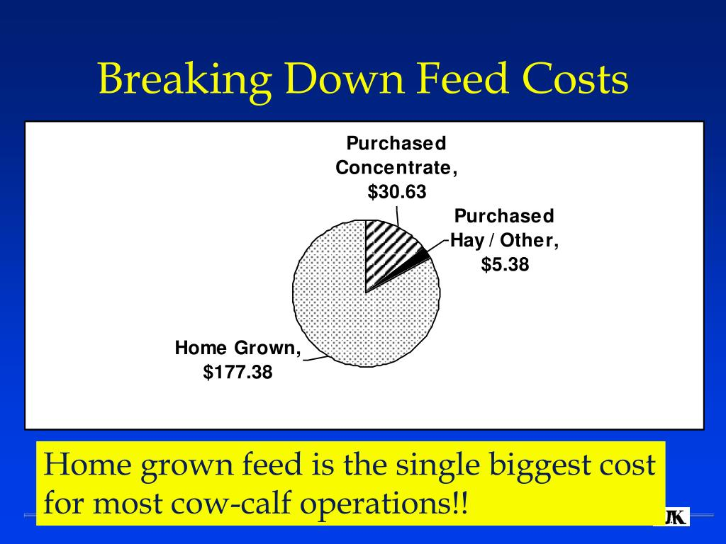 Breaking Down Feed Costs