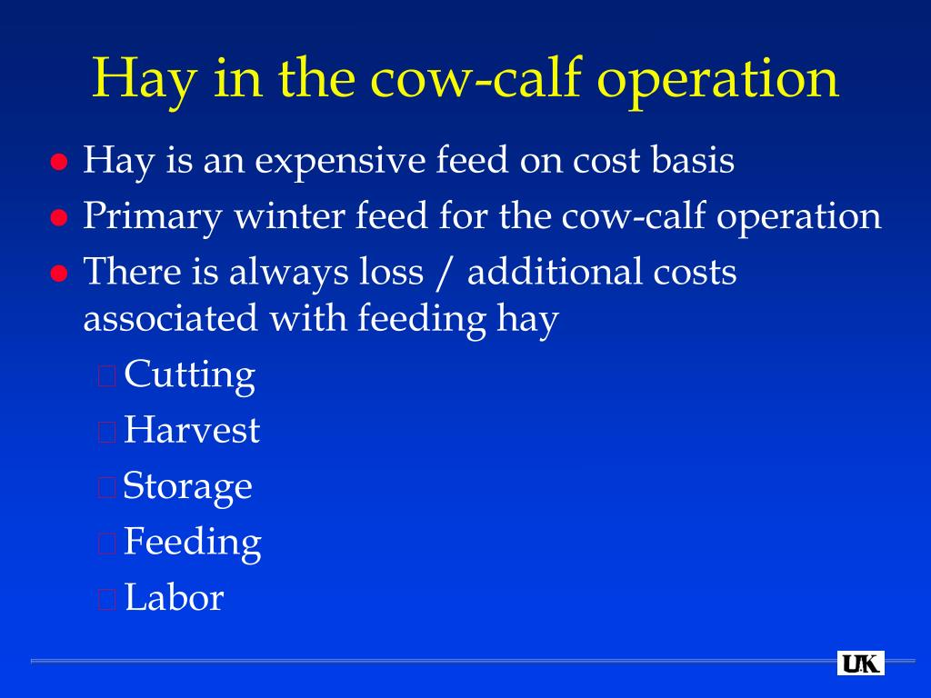 Hay in the cow-calf operation