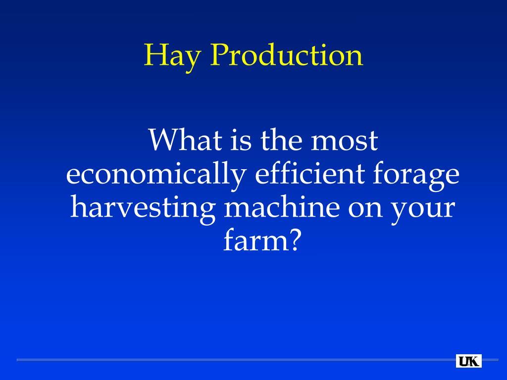 Hay Production