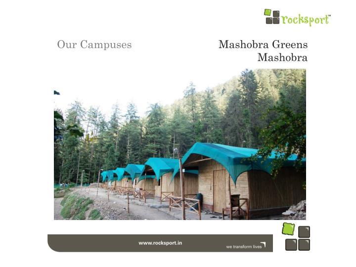 Mashobra Greens