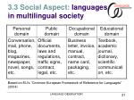 3 3 social aspect languages in multilingual society