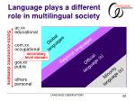 language plays a different role in multilingual society